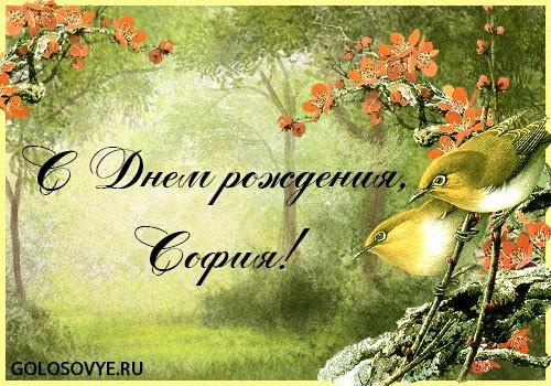 """Открытка """"С днем рождения, София!"""""""