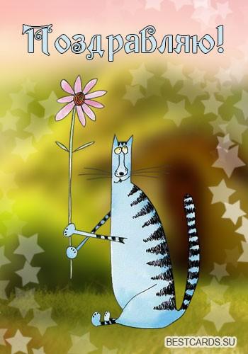 """Открытка """"Поздравляю!"""" с котом и цветочком"""