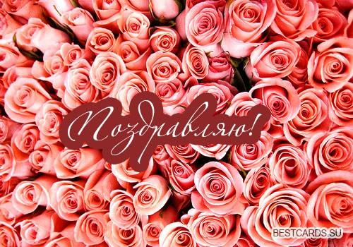 """Открытка """"Поздравляю!"""" с алыми розами"""