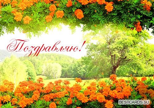 """Открытка """"Поздравляю!"""" с цветами и природой"""