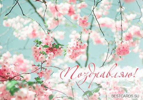 """Открытка """"Поздравляю!"""" с нежными цветочками"""
