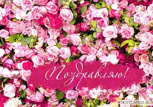 """Открытка """"Поздравляю!"""" с розами"""