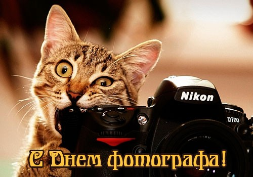 с Днем фотографа